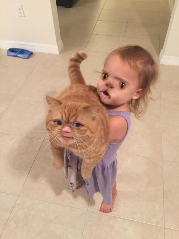 faceswap-enfant chat